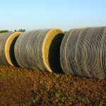 Bales stored outdoors - John Deere B-Wrap®