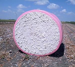 TamaWrap Pink